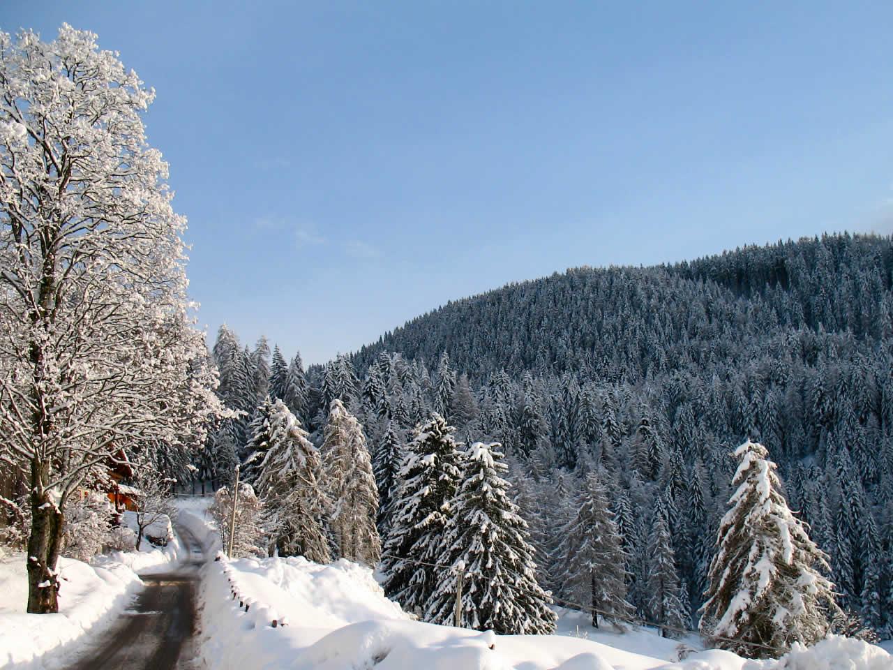Ferien-Südtirol-Blog - Wellness & Beauty